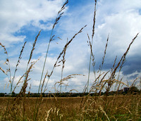 20120714_country walk_0003