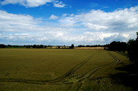 20120714_country walk_0061